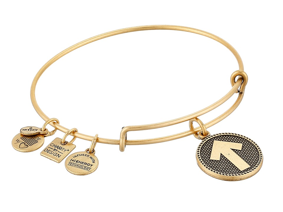 Alex and Ani - Charity By Design - Stand Up to Cancer Bracelet (Rafaelian Gold Finish) Bracelet