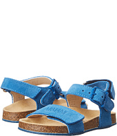 Armani Junior - Birkenstock Sandal in Royal Blue (Toddler/Little Kid)