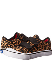 Keds Kids - Toddler HL (Toddler/Little Kid)