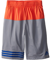 adidas Kids - Q1/Q2 Double Mesh Infinte Shorts (Big Kids)