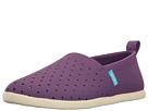 Native Kids Shoes - Venice (Little Kid)