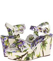 Dolce & Gabbana - C17279