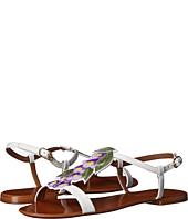 Dolce & Gabbana - C19239