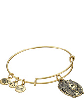 Alex and Ani - Guardian of Answers Charm Bangle