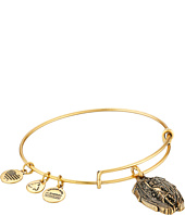 Alex and Ani - Guardian of Strength Charm Bangle