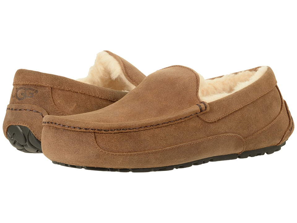 UGG Ascot (Chestnut) Men