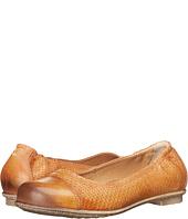 taos Footwear - Cleo