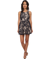Gabriella Rocha - Cora Lace Sleeveless Bell Dress