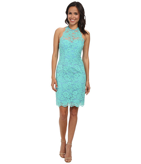 Nicole Miller Cordelia Lace Party Dress - 6pm.com