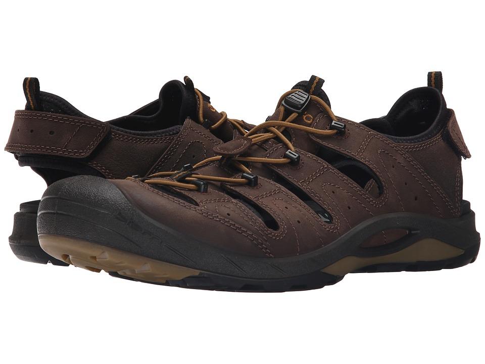 ECCO Sport Biom Delta Offroad Coffee/Black/Dried Tomato Mens Shoes
