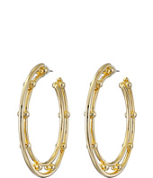 DANNIJO - ILLEANA Hoop Earrings