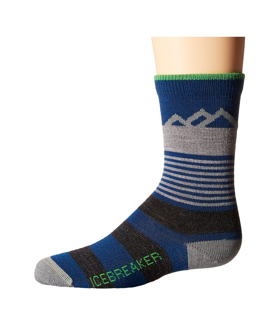 Icebreaker Lifestyle Ultra Light Crew Mount Cook Toddler/Little Kid/Big Kid Largo Quarter Length Socks Shoes