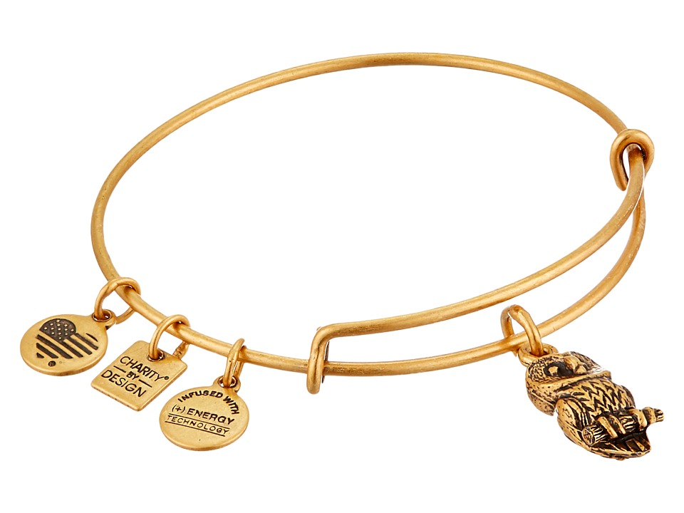 Alex and Ani - Charity by Design Ode to the Owl Charm Bangle (Rafaelian Gold Finish) Bracelet