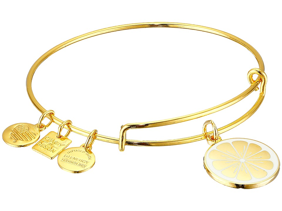 Alex and Ani - Charity by Design Zest for Life II Charm Bangle (Shiny Gold Finish) Bracelet
