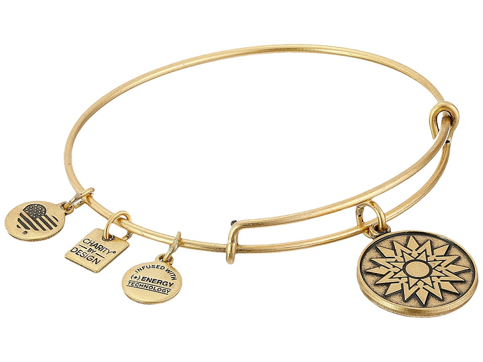 Alex and Ani - Charity by Design New Beginnings Charm Bangle (Rafaelian Gold Finish) Bracelet