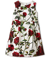Dolce & Gabbana - Ceremony Rose Print Sleeveless Dress (Toddler/Little Kids)