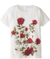 Dolce & Gabbana - Ceremony Print Short Sleeve T-Shirt (Infant)