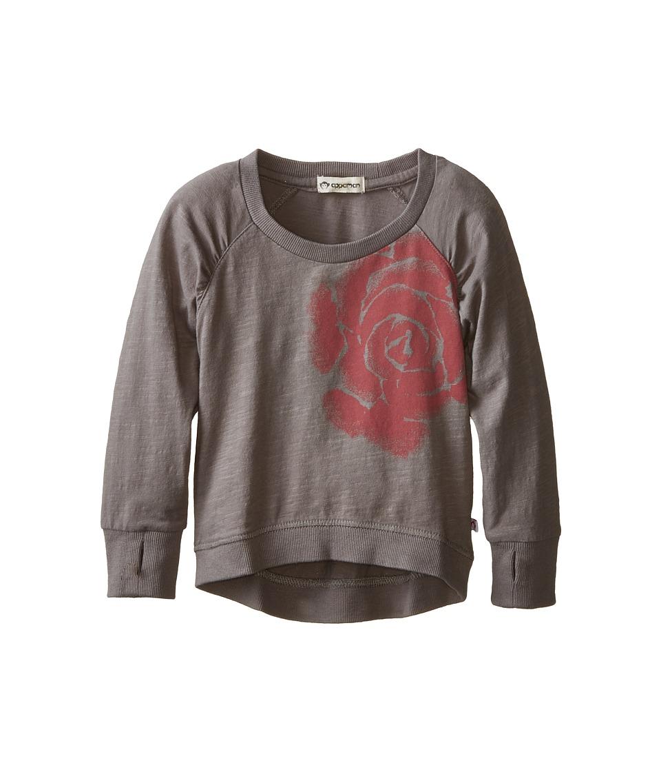 Appaman Kids - Thumbhole Raglan Tee - Rose (Toddler/Little Kids/Big Kids) (Steeple Grey) Girl's T Shirt