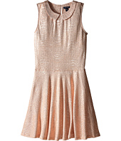 Tommy Hilfiger Kids - Collared Metallic Dress (Big Kids)