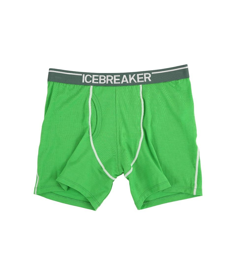 Icebreaker Anatomica Boxers w/ Fly Balsam/Canoe Mens Underwear