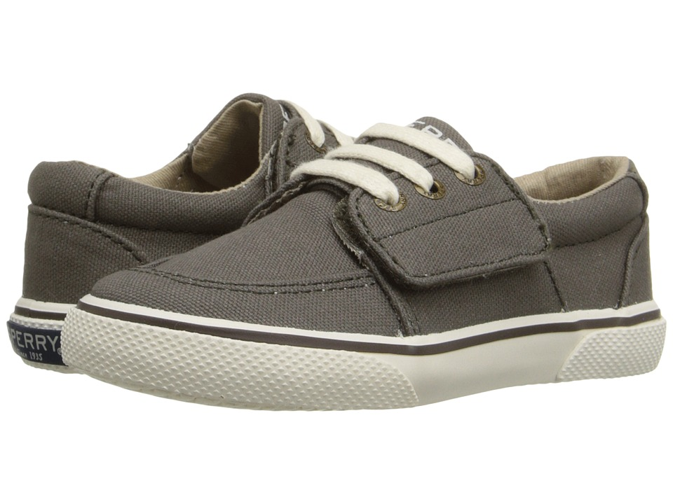 Little Kids Ollie Jr Black Sperry