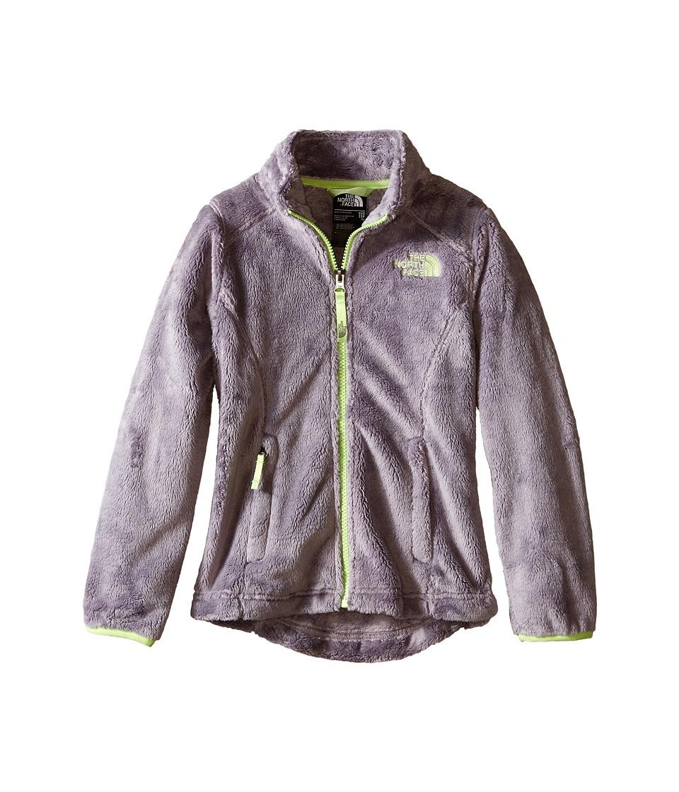 The North Face Kids Osolita Jacket (Little Kids/Big Kids) (Metallic Silver/Budding Green (Prior Season)) Girl