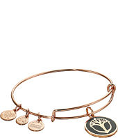 Alex and Ani - Color Infusion Unexpected Miracles Expandable Bangle