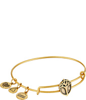Alex and Ani - Unexpected Miracles Slider Expandable Wire Bangle