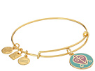 Alex and Ani Charity by Design - The Way Home Expandable Charm Bangle Bracelet