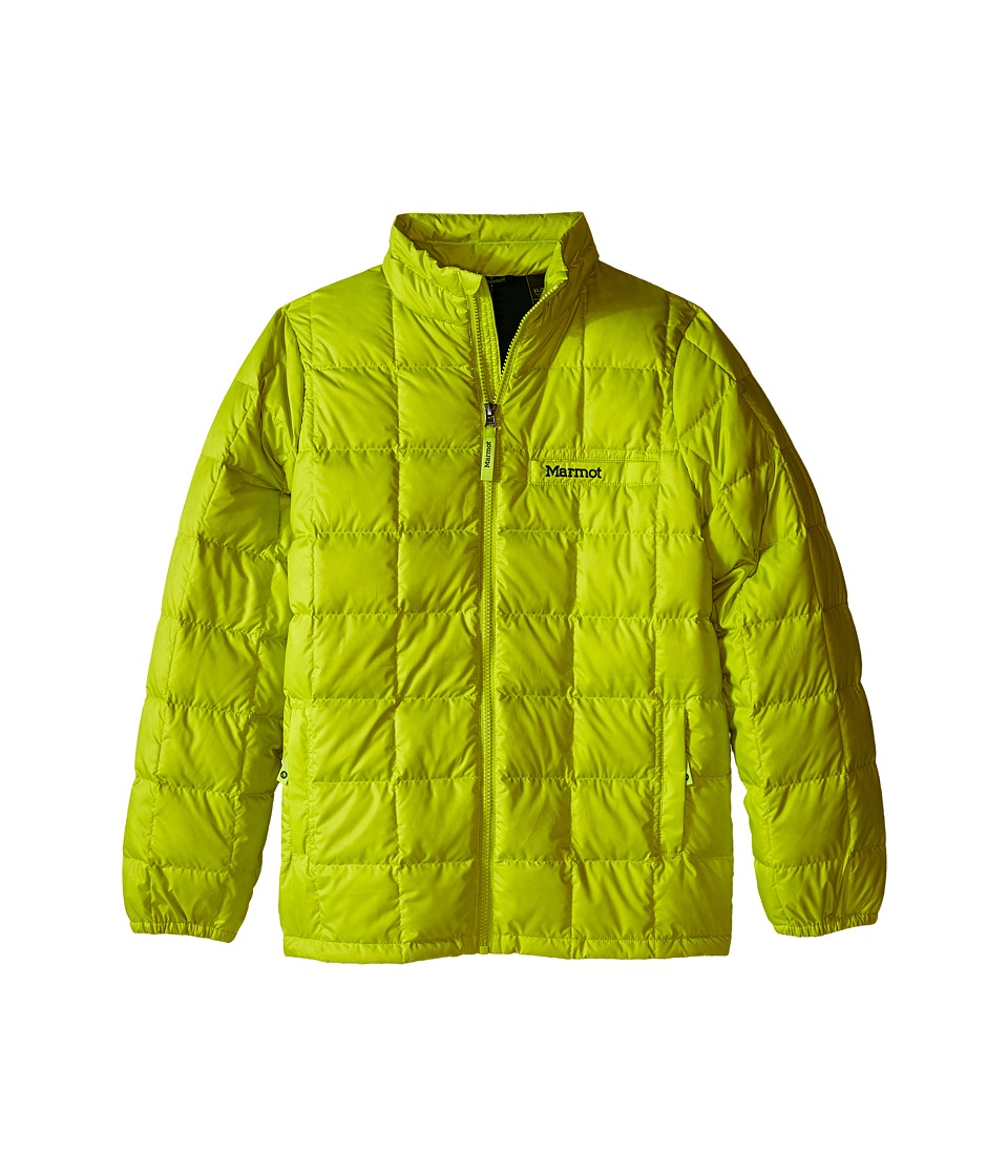 Marmot Kids Boys Ajax Jacket Little Kids/Big Kids Bright Lichen Boys Jacket