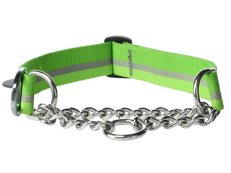 Ruffwear Chain Reaction Collar Meadow Green Dog Collar