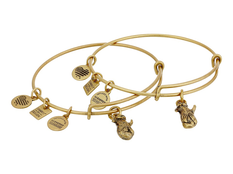 Alex and Ani - Charity by Design Side by Side Set of 2 Expandable Wire Bangles