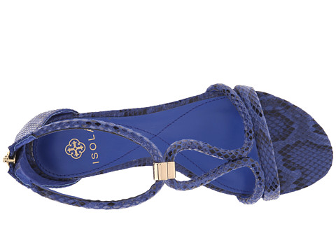 Isola Elin Electric Blue Snake Print 6pm Com