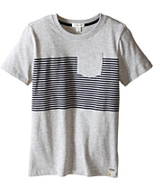 Pumpkin Patch Kids - Core Essentials Hunter Stripe Tee (Infant/Toddler/Little Kids/Big Kids)