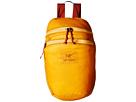 Arc'teryx Index 15 Backpack (Aspen)