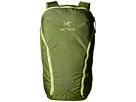 Arc'teryx Sebring 25 Backpack (Twin Leaf)