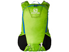 Salomon Skin Pro 15 Set (Granny Green)