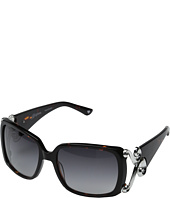 Brighton - Genoa Sunglasses