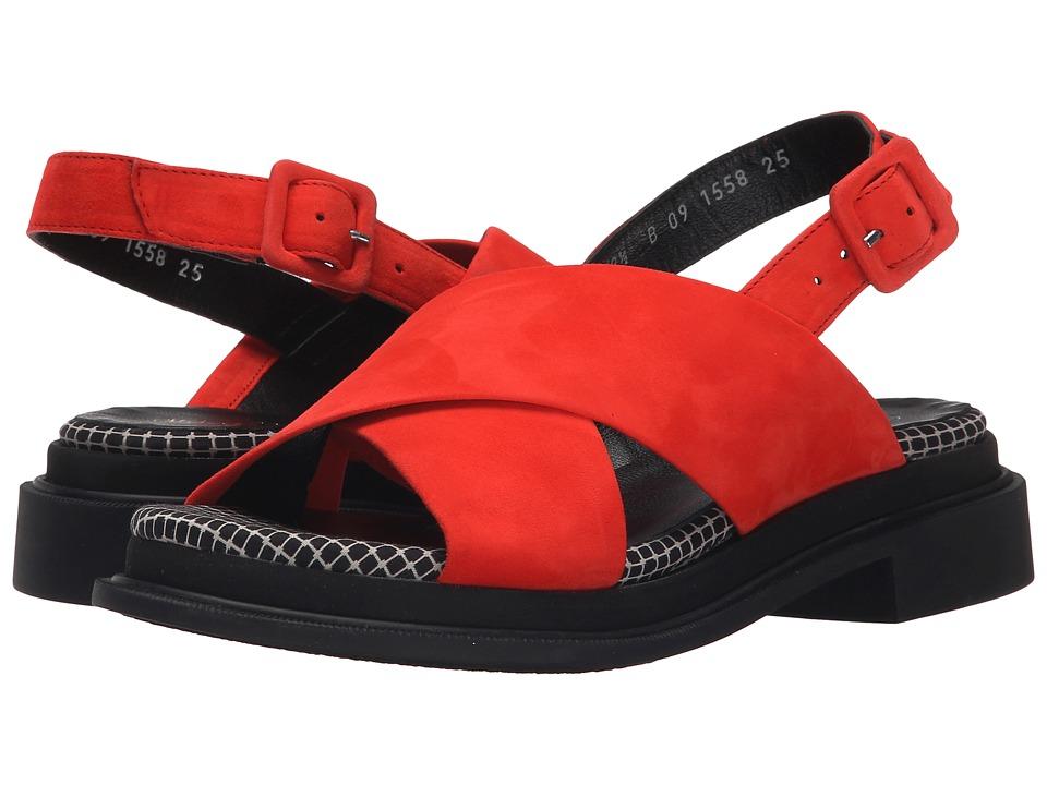 Robert Clergerie Calientek Tanger Suede Womens Shoes