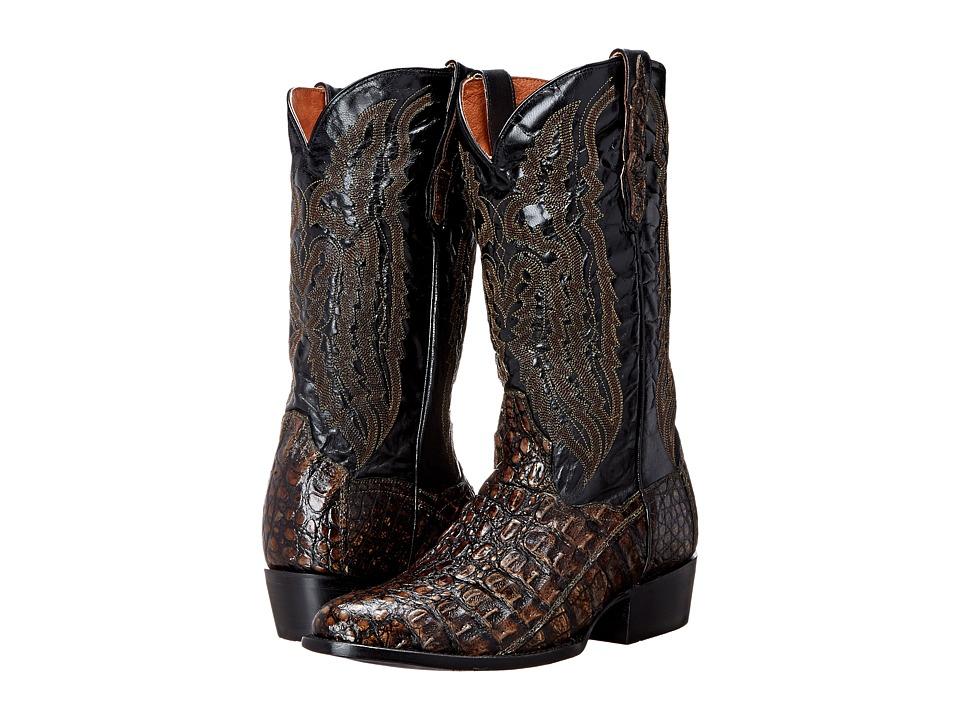 Dan Post Everglades (Brown) Cowboy Boots