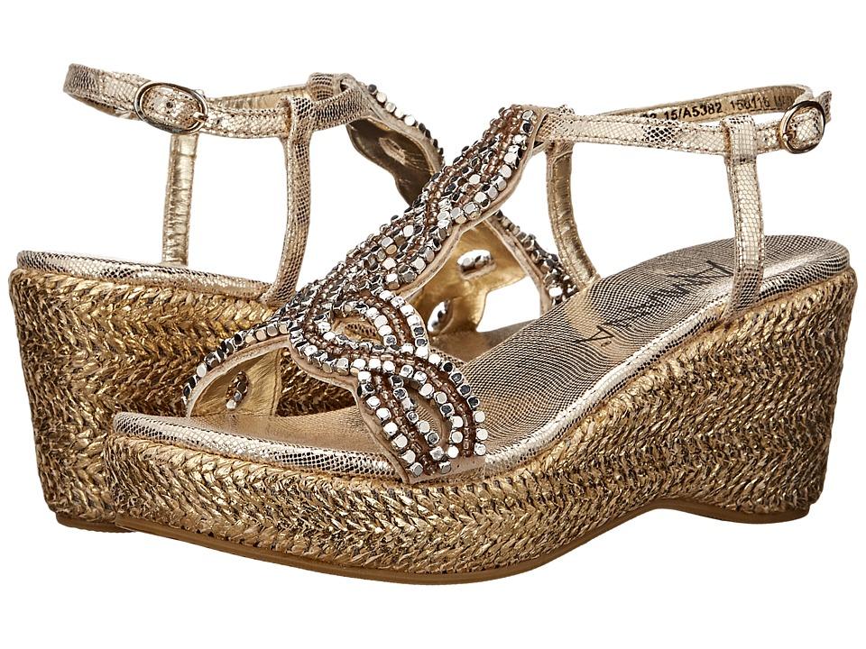 Amiana - 15-A5382 (Little Kid/Big Kid/Adult) (Gold Scored Metallic) Girls Shoes