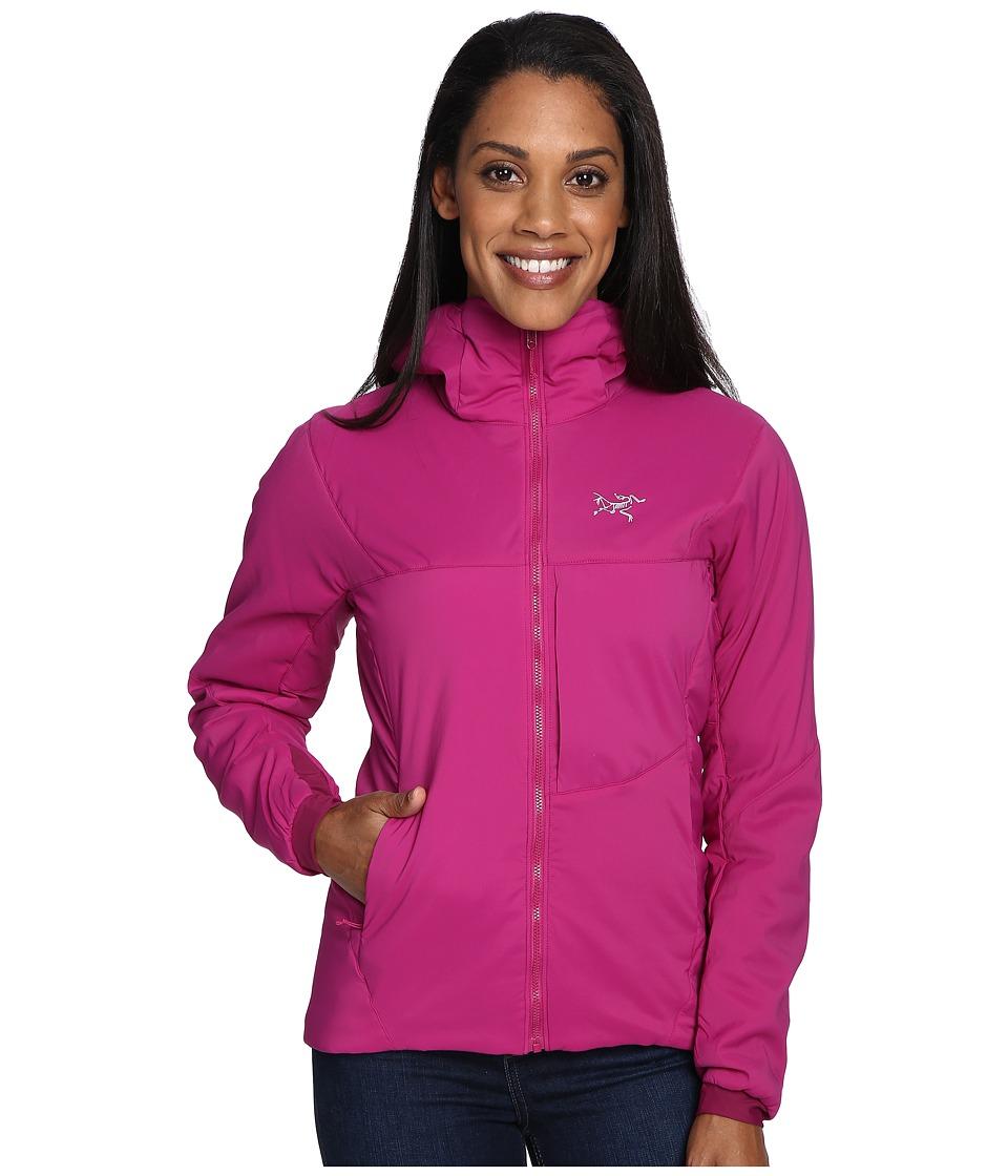 Arc'Teryx Proton LT Hoodie (Violet Wine) Women's Sweatshirt