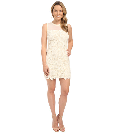 KUT from the Kloth Illusion Lace Dress