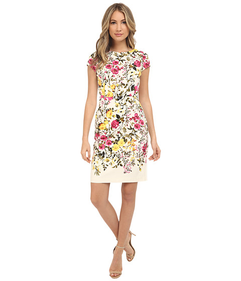 Adrianna Papell Vintage Floral Solid Back Sheath Dress