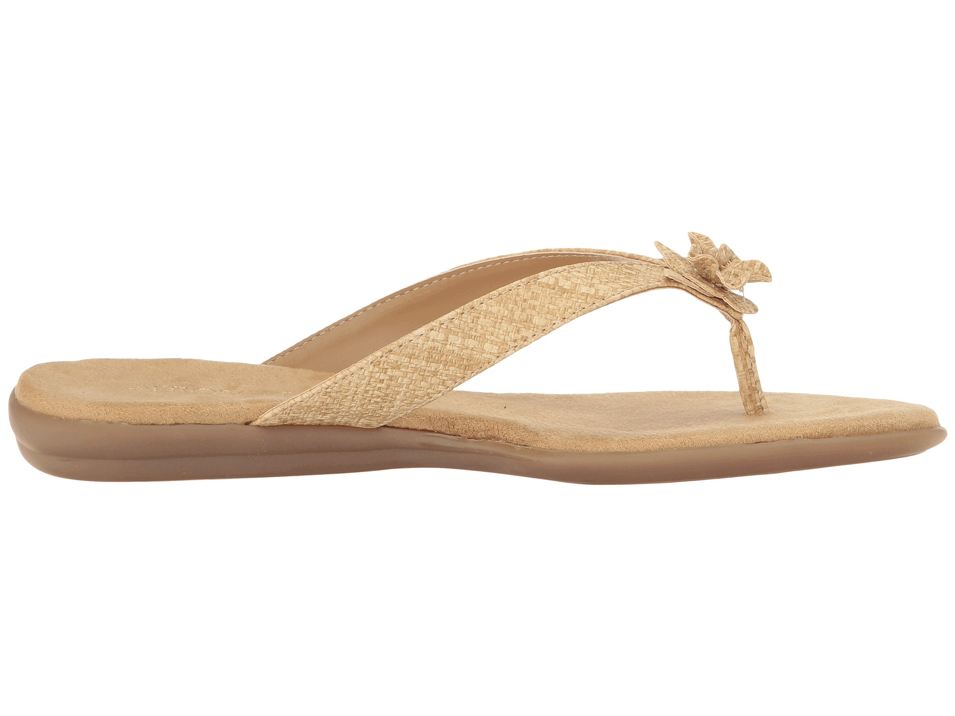 A2 by Aerosoles Branchlet at 6pm.com