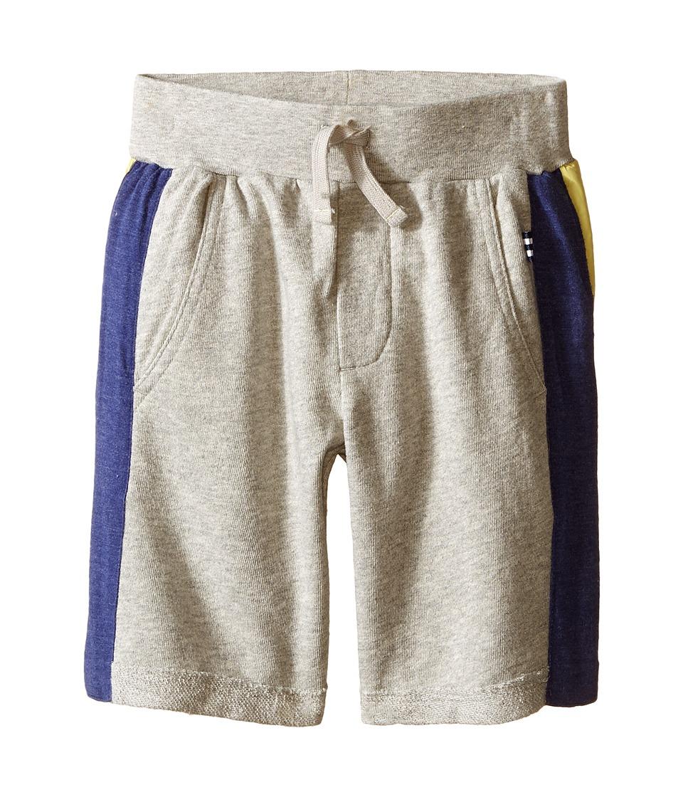 Splendid Littles Active Shorts Toddler Grey Heather Boys Shorts