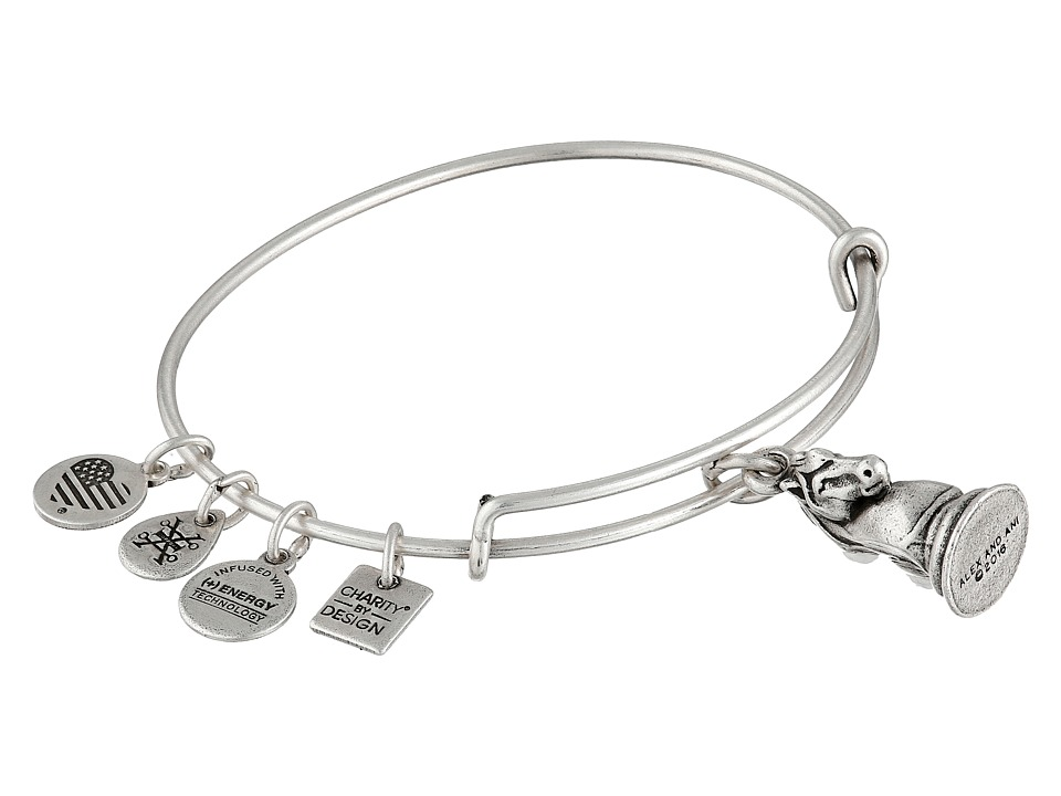 Alex and Ani - Charity By Design - The Knight Charm Bangle (Silver) Bracelet