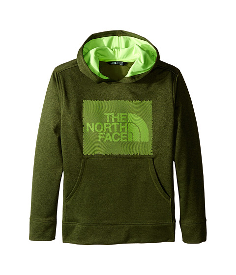 The North Face Kids Surgent Pullover Hoodie (Little Kids/Big Kids)