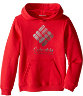Columbia Kids - Gem Grain Hoodie (Little Kids/Big Kids)