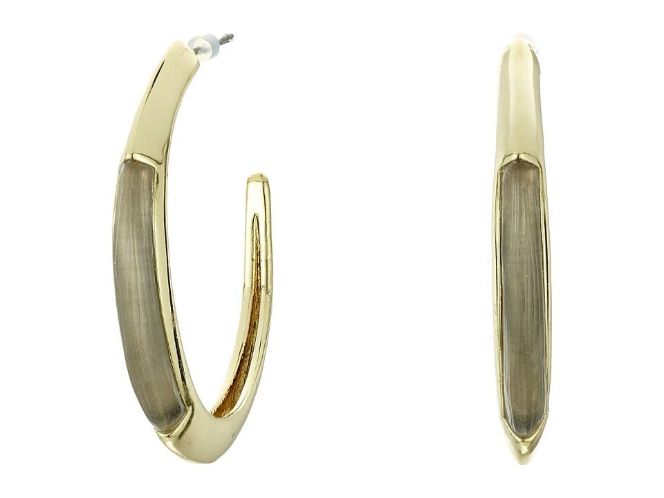 Alexis Bittar Crescent Hoop Earrings Warm Grey Earring